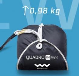 Quadro light 100
